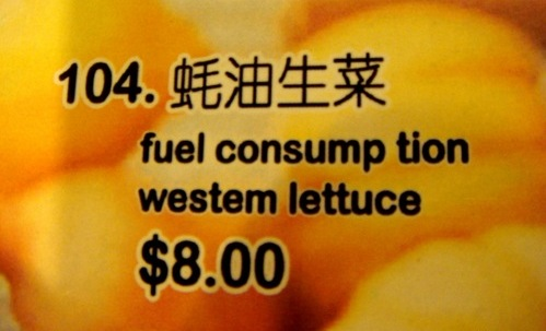 Chinees vertaalbureau - chinglish 047