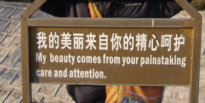 Chinees vertaalbureau - chinglish 182